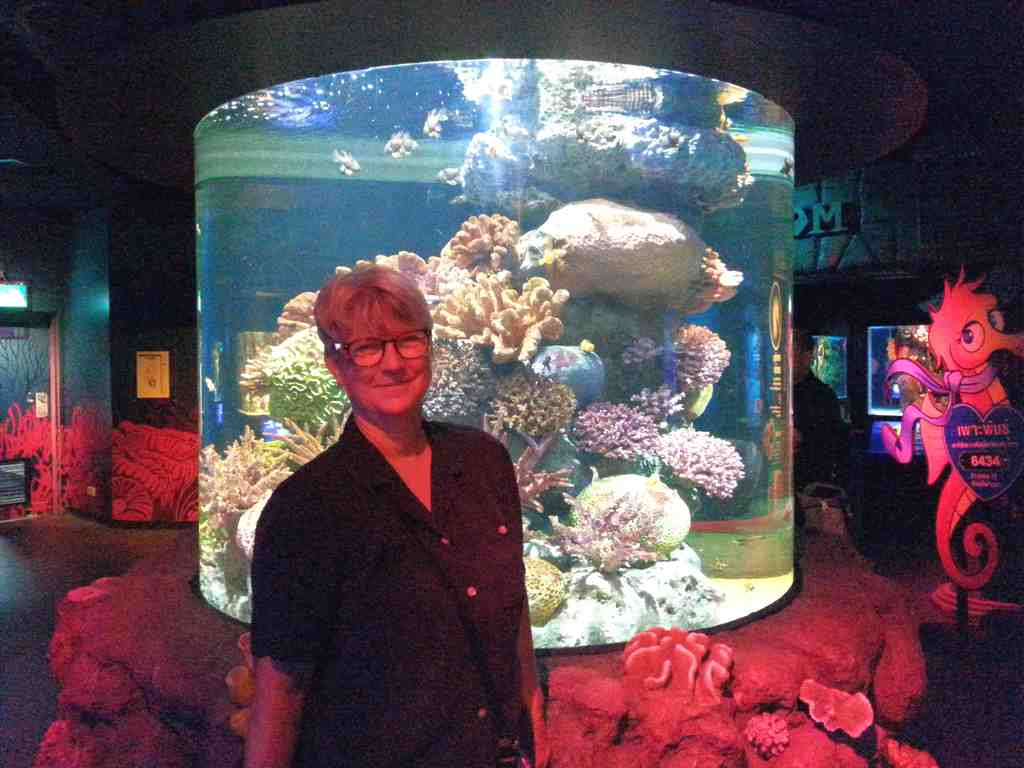 February 2017 Nan Harter Thailand Et Ticket Sea Life Ocean World Aquarium Only Child Standing By A Coral Reef Exhibit